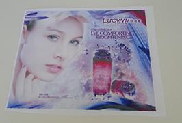 Баннер-флажок из ткани, отпечатанный на эко-сольвентном принтере 1,6 м (5 футов) WER-ES160 4