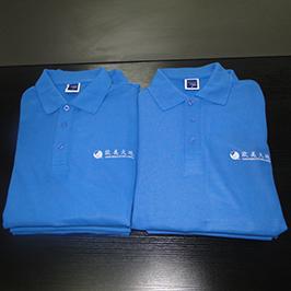 Образец печати футболки поло на принтере футболки A3 WER-E2000T